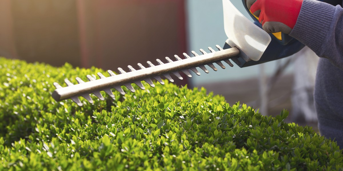 Lawn Maintenance & Landscaping